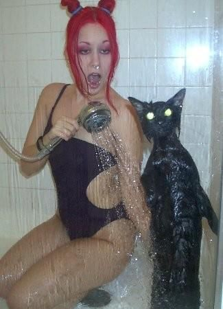 cat in shower